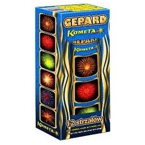 GEPARD - P6012