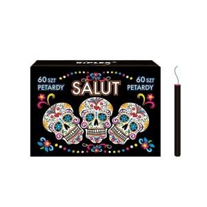 SALUT - KCE201