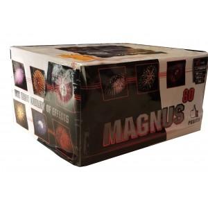 MAGNUS - PXB2412