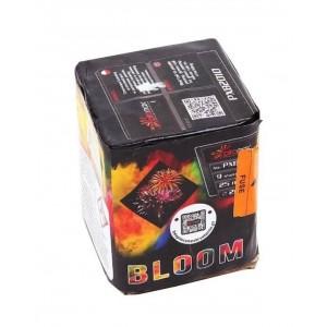BLOOM - PXB2010