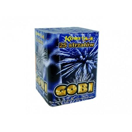 Gobi - P7526
