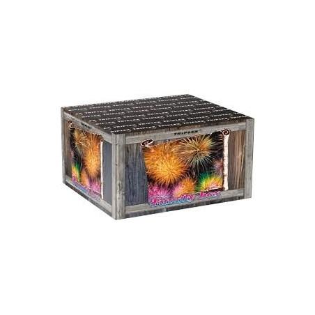FAMILY BOX – TXB909