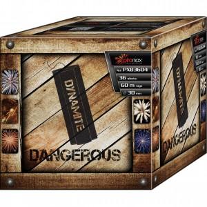 DANGEROUS - PXB3604